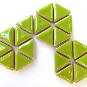 Ceramic Triangles Kiwi H13